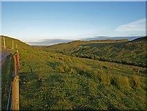 NS3262 : Calder Glen, Muirshiel. by wfmillar