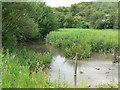 SE8453 : Millington Beck by bernard bradley
