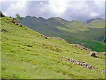 NY2604 : The fellside below Great Knott by Ian Greig