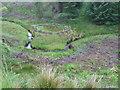 NS5307 : Sheepfold by the burn below Meikle Hill by Chris Wimbush