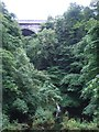 N9408 : Poulaphouca Falls and Bridge by JP