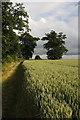 TL8063 : Parsonage Field, Little Saxham by Bob Jones