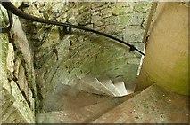 J4772 : Scrabo Tower near Newtownards (detail) (3) by Albert Bridge