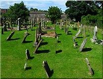 J5081 : Bangor Abbey graveyard by Rossographer