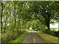 TA3126 : Country Lane near Frodingham Hall by Andy Beecroft