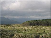 SH5733 : Morfa Harlech Forestry by Peter Humphreys
