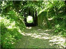 TQ7361 : Quarry tunnel, Burham by DAVID MERSH