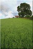 SK4536 : Risley Lodge Farm by David Lally