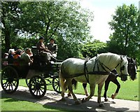 SS6140 : Carriage ride, Arlington Court by Simon Huguet