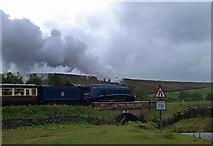 SE8499 : Sir Nigel Gresley by Steve  Fareham