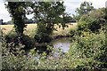 TM1487 : Hidden Pond by roger geach
