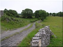 G9166 : Road at Ballymagroarty Scotch by Kenneth  Allen