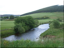 NJ4716 : River Don at Milltown of Kildrummy (July) by Stanley Howe