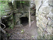 ST5295 : Piercefield House- entrance to cellars by Nick Mutton