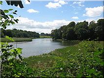 O1471 : River Nanny at The Ninch, Co. Meath by Kieran Campbell