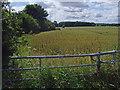 TA1549 : South of Catwick Road, near Bewholme by Paul Harrop