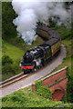 NZ8302 : Steaming through Darnholm by Mick Lobley