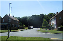 TQ5704 : Wannock Coppice, Polegate by Kevin Gordon