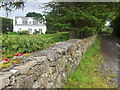 G9884 : Garvagh townland by louise price