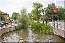 SU4619 : Stream between Riverside and Montague Road by Peter Facey