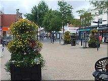 SO9496 : Bilston Flower Display by Gordon Griffiths