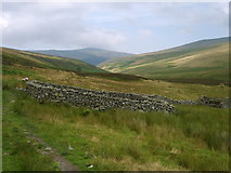 NY3031 : Sheepfold Skiddaw Forest by Michael Graham