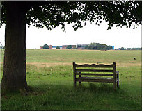 TA0139 : Seat on Beverley Westwood by Andy Beecroft