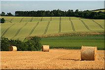NT5943 : Farmland at Legerwood by Walter Baxter