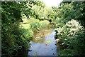 TF0812 : River Glen by Richard Croft