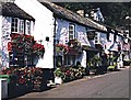 SX2051 : Inn at Crumplehorn by Ray