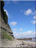 ST1972 : The cliffs of Penarth Head by Alan Bowring