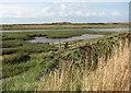TF8544 : Sluice in the saltmarsh by Evelyn Simak