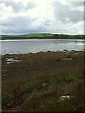 G9274 : Legacurry at low tide by louise price