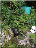 G9174 : Old well in Rossilly by louise price