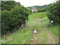 SO5407 : Approaching Lodges Farm by Pauline E