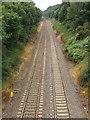 SU9989 : Railway cutting at Gerrards Cross by David Hawgood