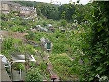 SE0724 : Allotments - Pye Nest Road by Betty Longbottom