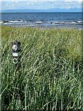 NS1902 : On The Ayrshire Coastal Path by Mary and Angus Hogg