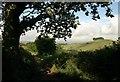 SX8460 : Glazegate Lane by Derek Harper