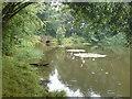 SM9618 : Rainy day at Withybush by Deborah Tilley