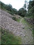 SS6549 : Slight landslide along the Heddon's path by Basher Eyre