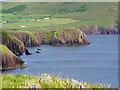 V4698 : The cliffs east of Dunn Cinn Tire by Peter Church