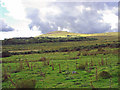 SN1434 : Moorland near Pantgwyn, Eglwyswen by Dylan Moore