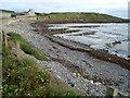 G7574 : Riggyheugh Beach by louise price