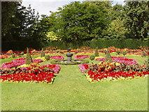 TQ2882 : Flower beds in Queen Mary's Garden, Regent's Park by David Hawgood