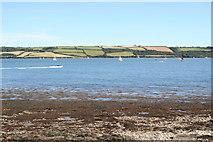 SW8234 : Carrick Roads from Penarrow Point by Rod Allday