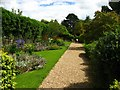 SN0204 : Floral path at Upton castle by Shaun Butler