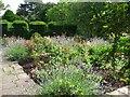 SN0204 : Upton Castle Rose Garden by Shaun Butler