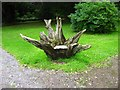 SN0204 : Novel use for a tree stump by Shaun Butler