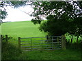 NY6722 : Footpath across the fields to Crackenthorpe by David Brown